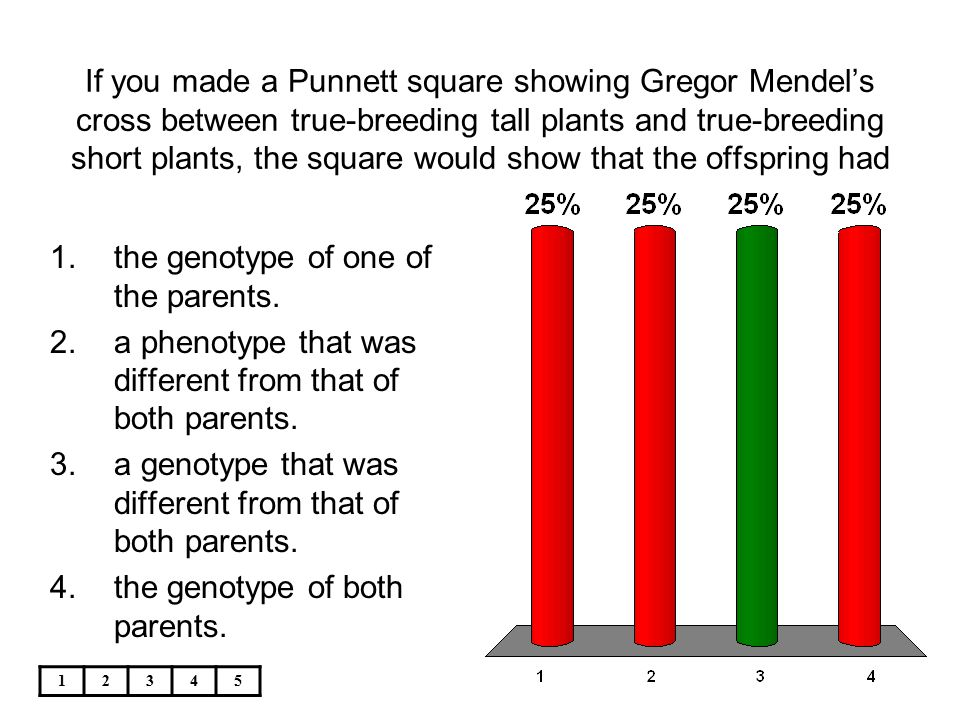 12345 If you made a Punnett square showing Gregor Mendel's cross between true-breeding tall plants and true-breeding short plants, the square would sh