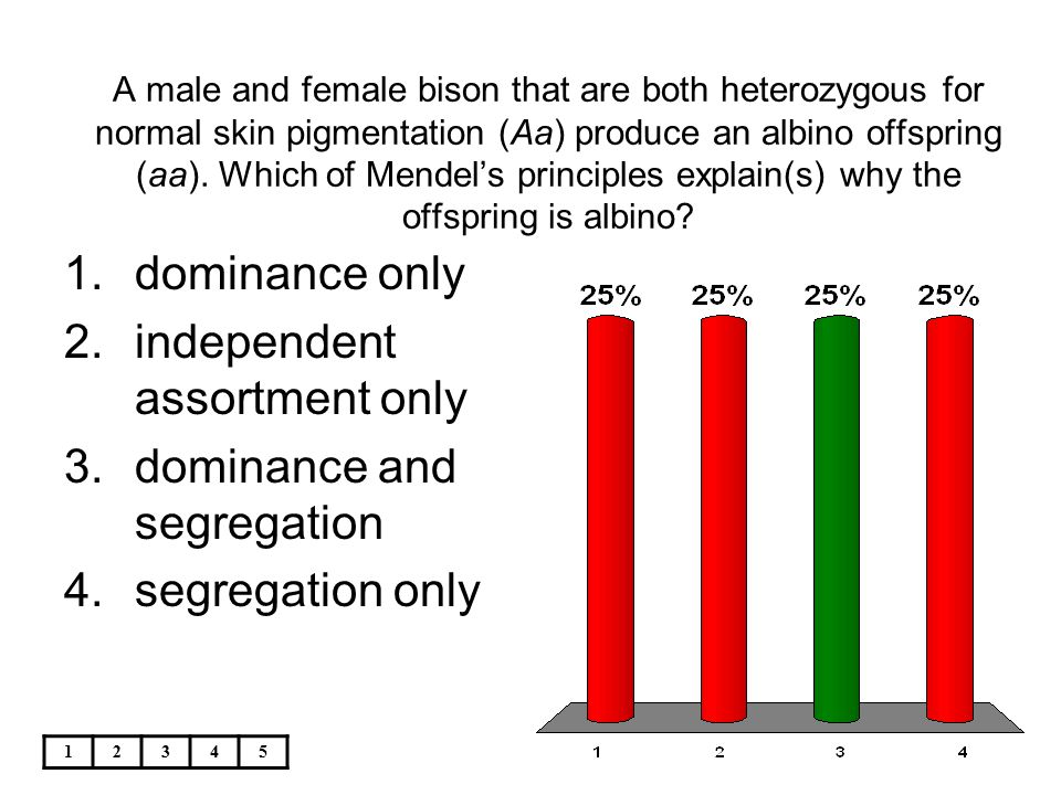 12345 A male and female bison that are both heterozygous for normal skin pigmentation (Aa) produce an albino offspring (aa). Which of Mendel's princip