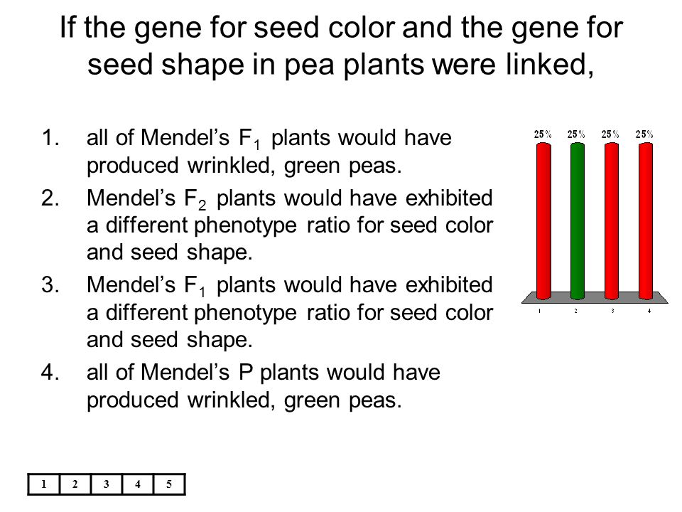 12345 If the gene for seed color and the gene for seed shape in pea plants were linked, 1.all of Mendel's F 1 plants would have produced wrinkled, gre