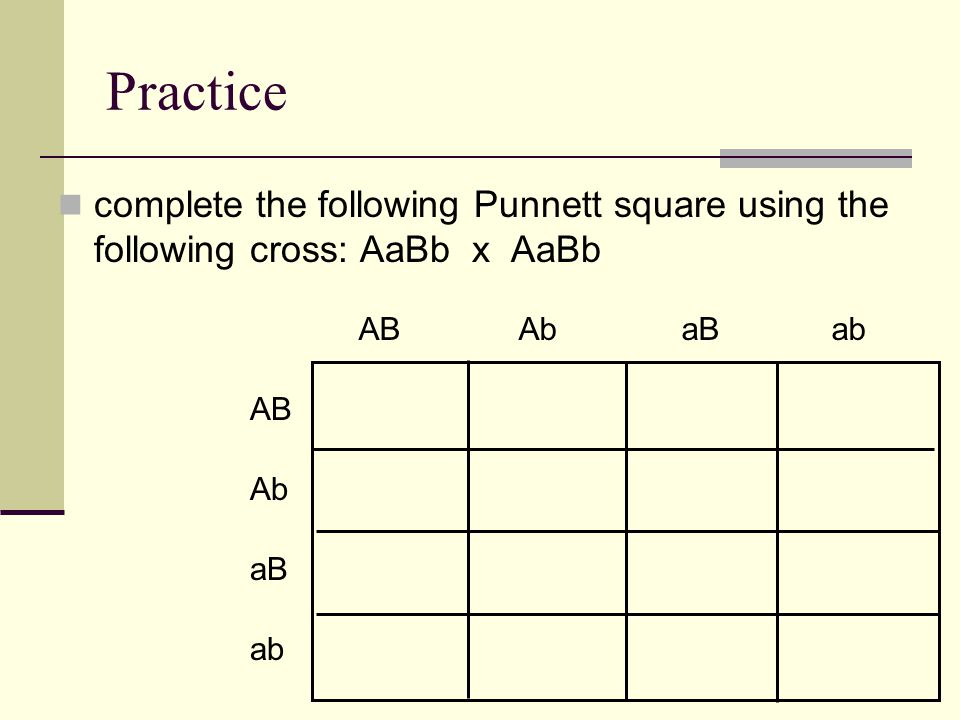 Practice complete the following Punnett square using the following cross: AaBb x AaBb AB Ab aB ab AB Ab aB ab