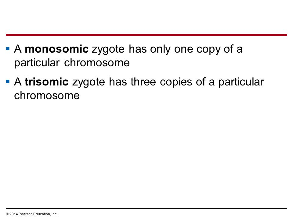 © 2014 Pearson Education, Inc.  A monosomic zygote has only one copy of a particular chromosome  A trisomic zygote has three copies of a particular
