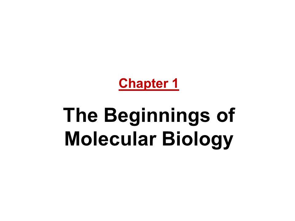 Chapter 1 The Beginnings of Molecular Biology