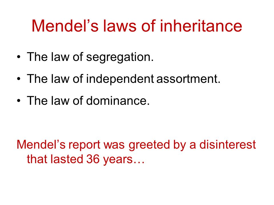 Mendel's laws of inheritance The law of segregation. The law of independent assortment. The law of dominance. Mendel's report was greeted by a disinte