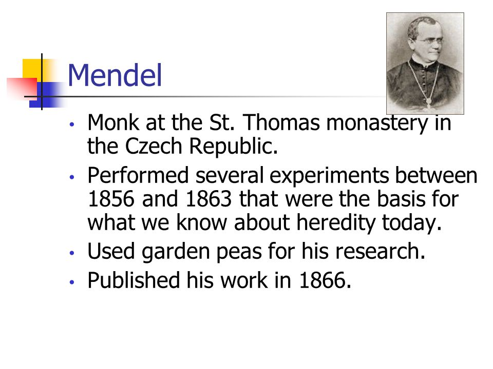 Mendel Monk at the St. Thomas monastery in the Czech Republic.
