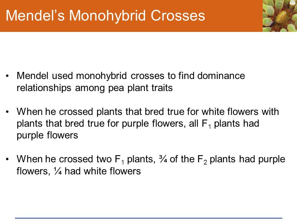 Mendel's Monohybrid Crosses Mendel used monohybrid crosses to find dominance relationships among pea plant traits When he crossed plants that bred tru