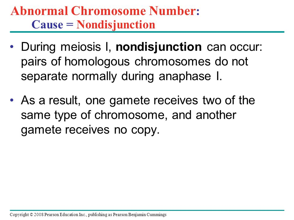 Abnormal Chromosome Number : Cause = Nondisjunction During meiosis I, nondisjunction can occur: pairs of homologous chromosomes do not separate normally during anaphase I.