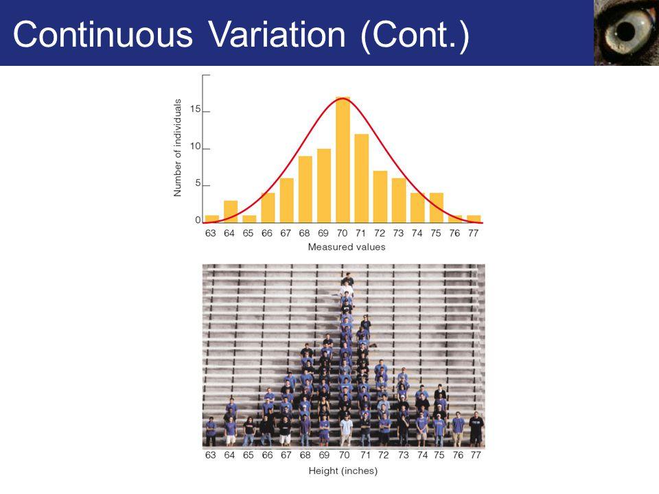 Continuous Variation (Cont.)