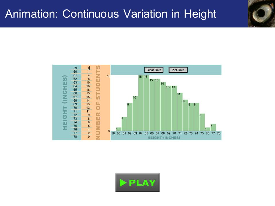 Animation: Continuous Variation in Height
