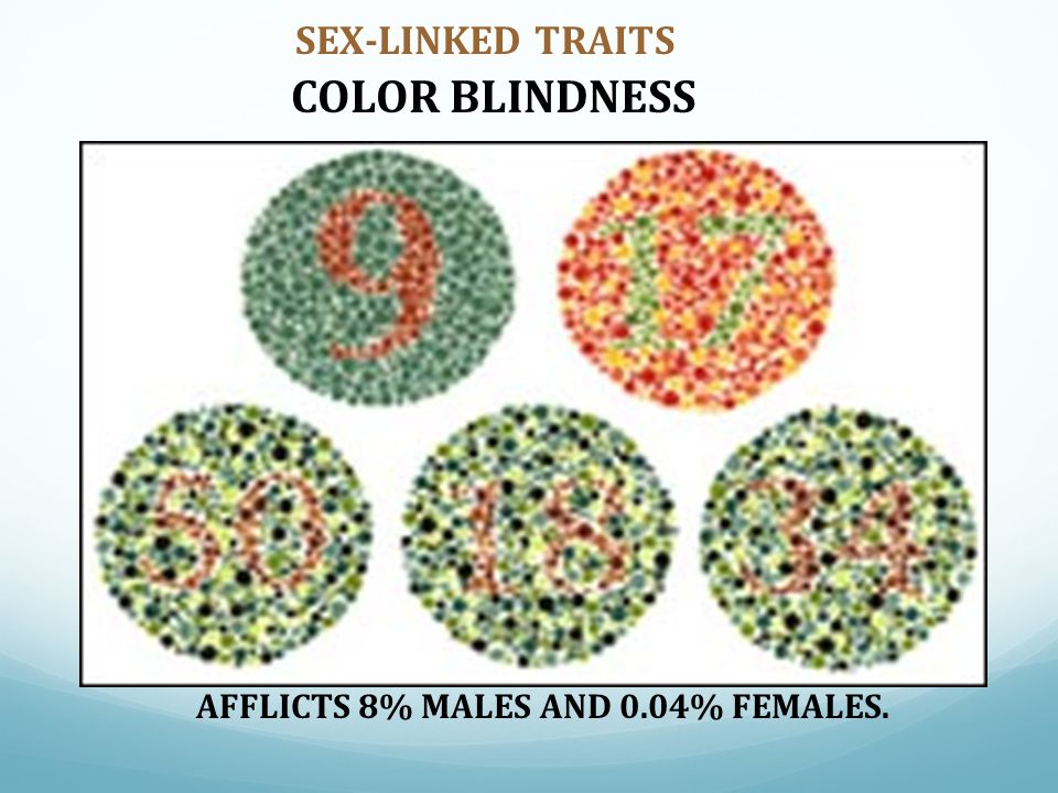 SEX-LINKED TRAITS COLOR BLINDNESS AFFLICTS 8% MALES AND 0.04% FEMALES.