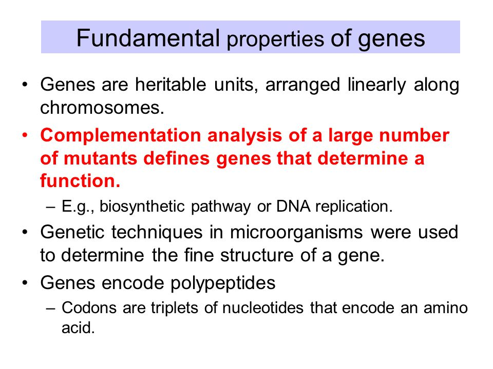 Fundamental properties of genes Genes are heritable units, arranged linearly along chromosomes.
