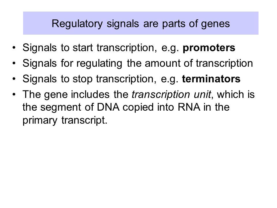 Regulatory signals are parts of genes Signals to start transcription, e.g.