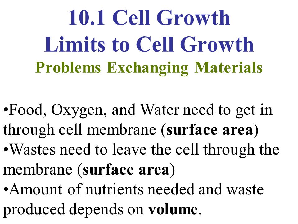 10.1 Cell Growth Limits to Cell Growth Problems Exchanging Materials Food, Oxygen, and Water need to get in through cell membrane (surface area) Waste