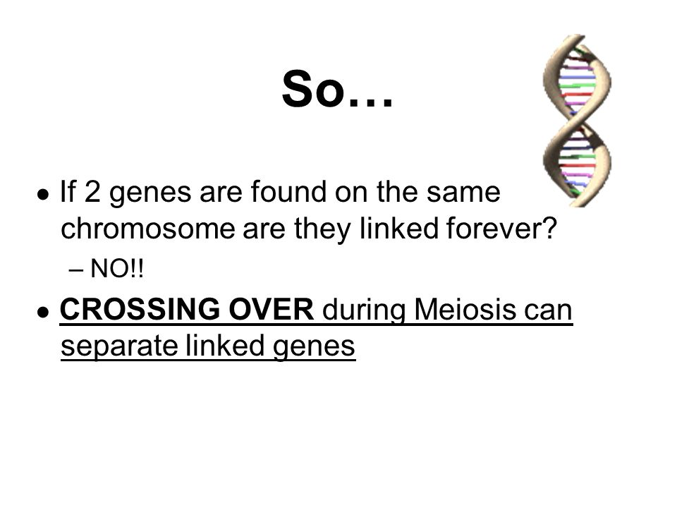 So… ● If 2 genes are found on the same chromosome are they linked forever? –NO!! ● CROSSING OVER during Meiosis can separate linked genes