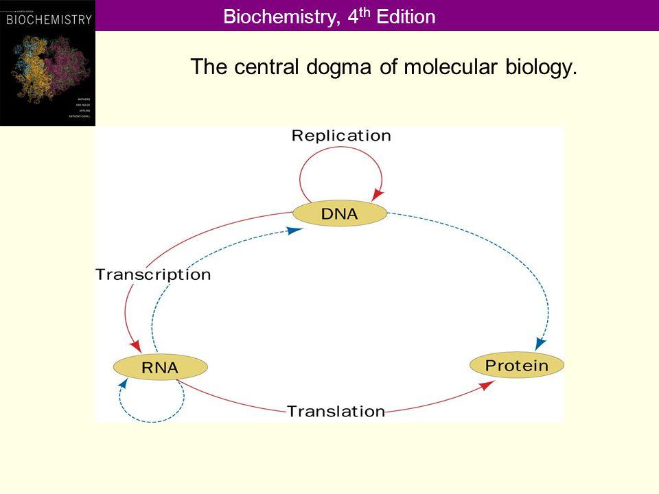 Biochemistry, 4 th Edition Prokaryotic and Eukaryotic Genomes Copyright © 2013 Pearson Canada Inc.