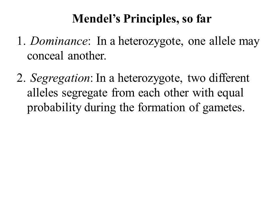 Mendel's Principles, so far 1. Dominance: In a heterozygote, one allele may conceal another. 2. Segregation: In a heterozygote, two different alleles