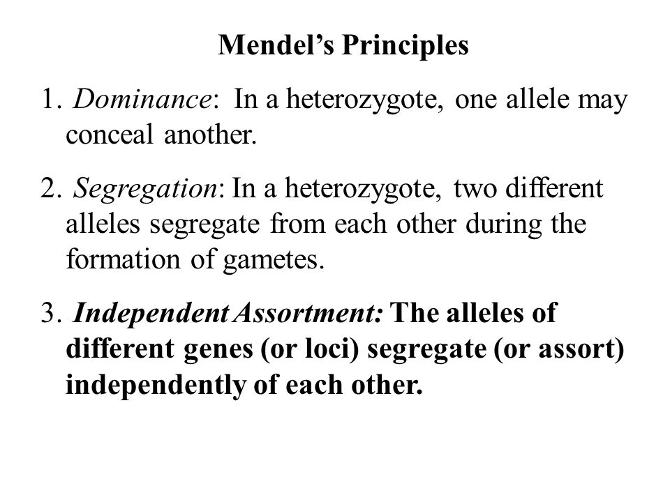 Mendel's Principles 1. Dominance: In a heterozygote, one allele may conceal another. 2. Segregation: In a heterozygote, two different alleles segregat