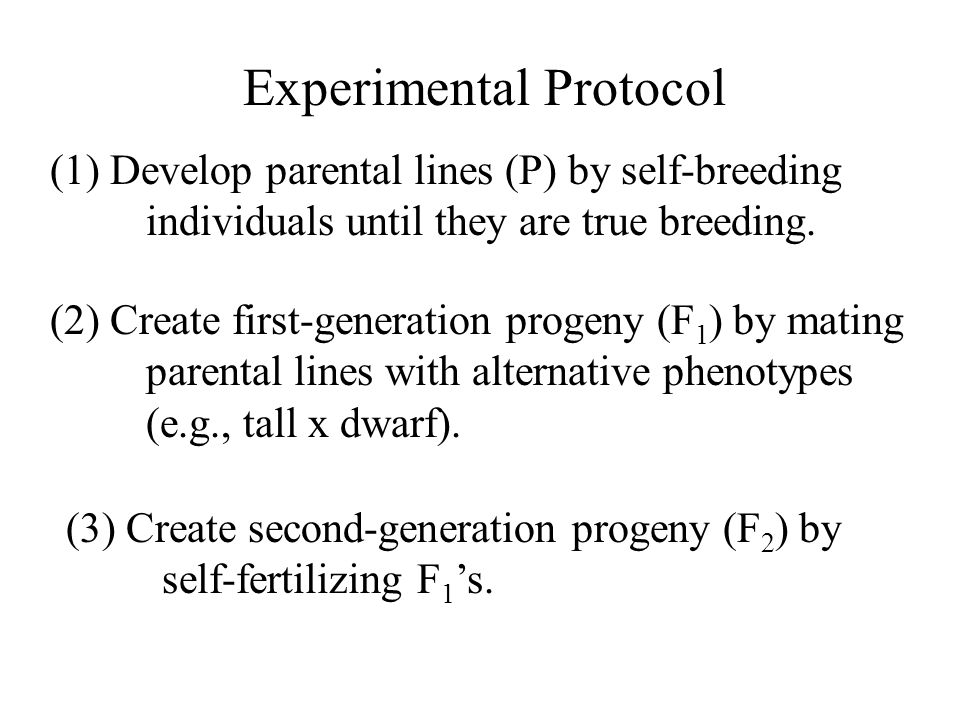 Experimental Protocol (1) Develop parental lines (P) by self-breeding individuals until they are true breeding. (2) Create first-generation progeny (F