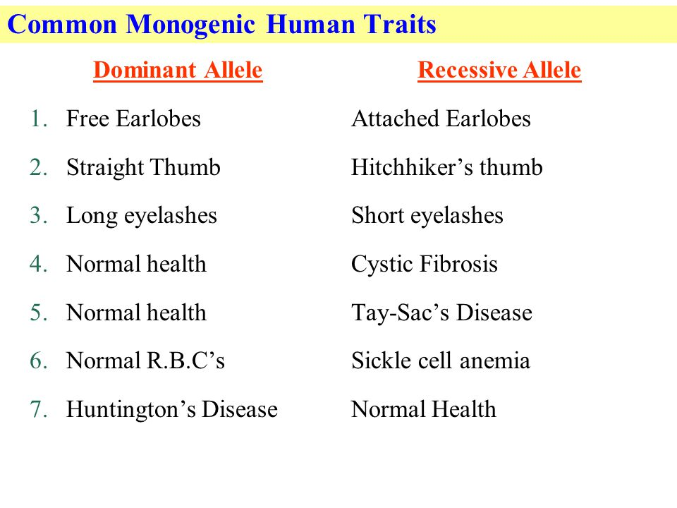 Common Monogenic Human Traits Dominant Allele 1.Free Earlobes 2.Straight Thumb 3.Long eyelashes 4.Normal health 5.Normal health 6.Normal R.B.C's 7.Huntington's Disease Recessive Allele Attached Earlobes Hitchhiker's thumb Short eyelashes Cystic Fibrosis Tay-Sac's Disease Sickle cell anemia Normal Health
