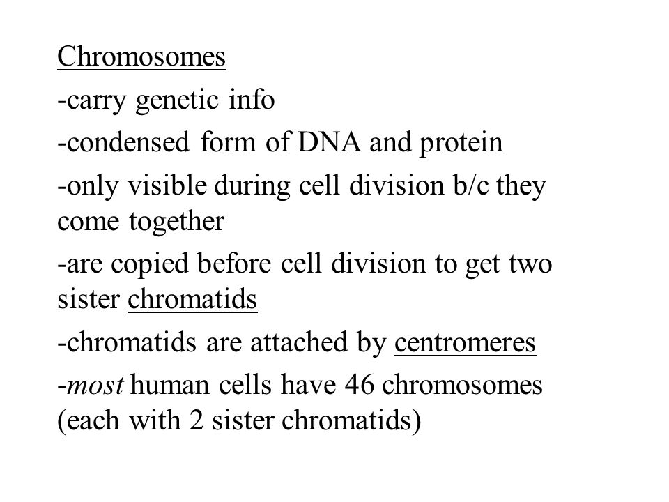 diploid- has both sets of homologous chromosomes haploid- has one set of chromosomes diploid (2N)  haploid (N) diploid = full set of chromosomes haploid = half set of chromosomes