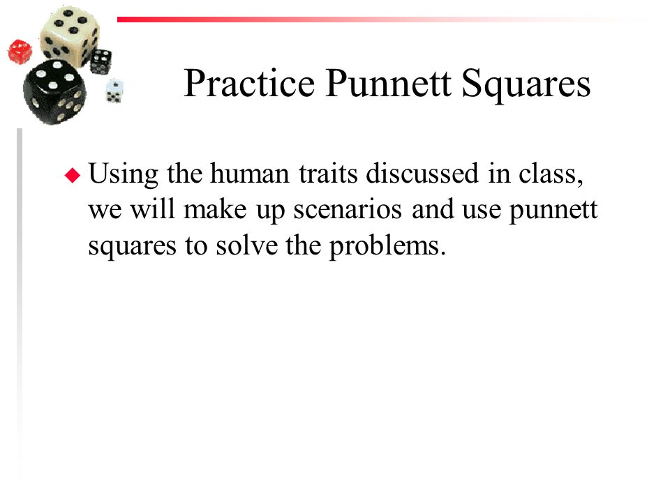 Practice Punnett Squares u Using the human traits discussed in class, we will make up scenarios and use punnett squares to solve the problems.