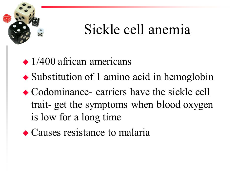 Sickle cell anemia u 1/400 african americans u Substitution of 1 amino acid in hemoglobin u Codominance- carriers have the sickle cell trait- get the