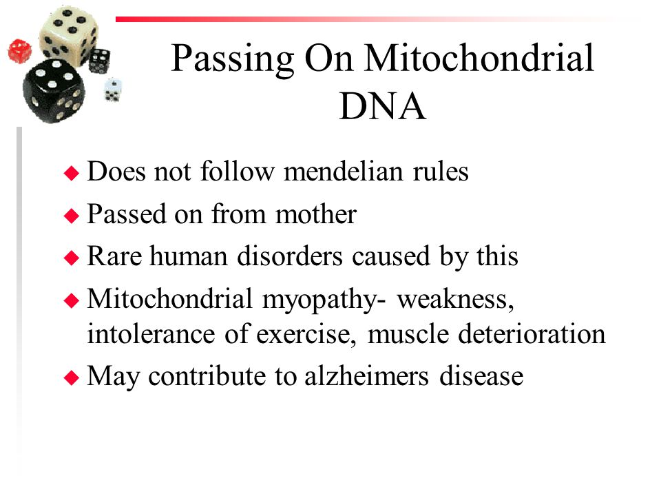 Passing On Mitochondrial DNA u Does not follow mendelian rules u Passed on from mother u Rare human disorders caused by this u Mitochondrial myopathy-