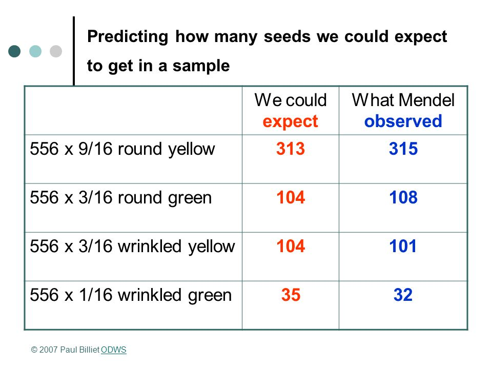Predicting how many seeds we could expect to get in a sample We could expect What Mendel observed 556 x 9/16 round yellow313315 556 x 3/16 round green
