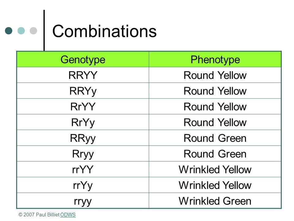 Combinations GenotypePhenotype RRYYRound Yellow RRYyRound Yellow RrYYRound Yellow RrYyRound Yellow RRyyRound Green RryyRound Green rrYYWrinkled Yellow rrYyWrinkled Yellow rryyWrinkled Green © 2007 Paul Billiet ODWSODWS