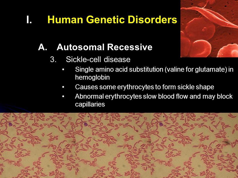 I. I.Human Genetic Disorders A. A.Autosomal Recessive 3.