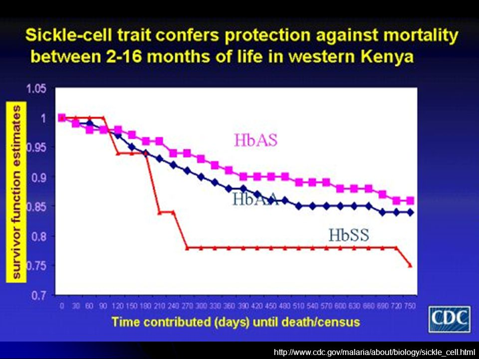http://www.cdc.gov/malaria/about/biology/sickle_cell.html