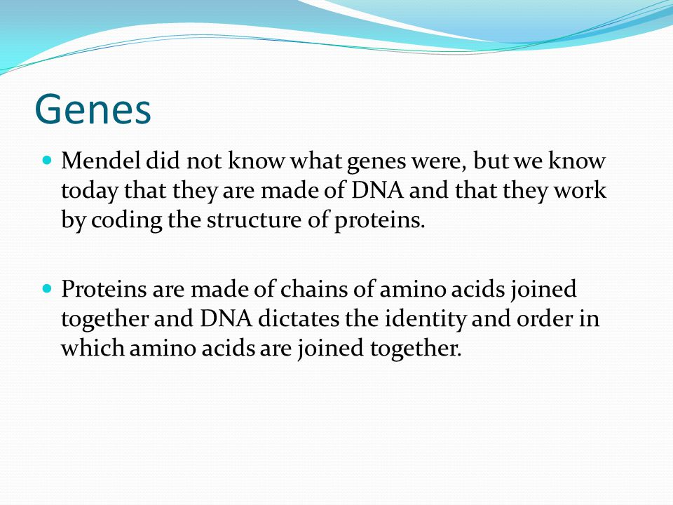 Quantitative genetic traits Most traits however are not under such simple direct control of one or a few genes.
