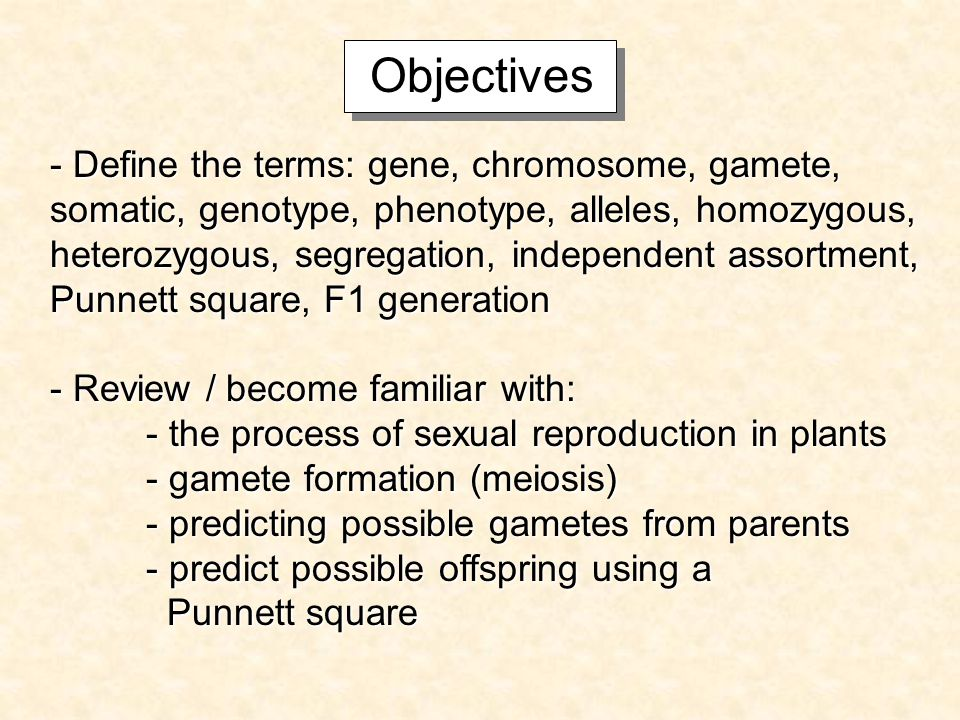 Objectives - Define the terms: gene, chromosome, gamete, somatic, genotype, phenotype, alleles, homozygous, heterozygous, segregation, independent assortment, Punnett square, F1 generation - Review / become familiar with: - the process of sexual reproduction in plants - gamete formation (meiosis) - predicting possible gametes from parents - predict possible offspring using a Punnett square Punnett square