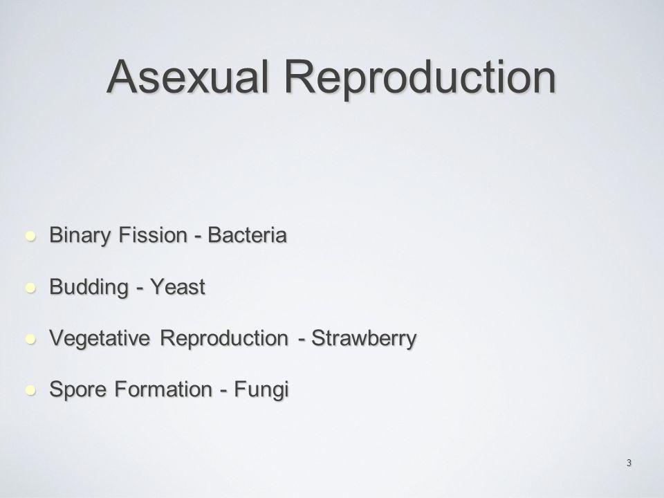 36 Genetic Recombination