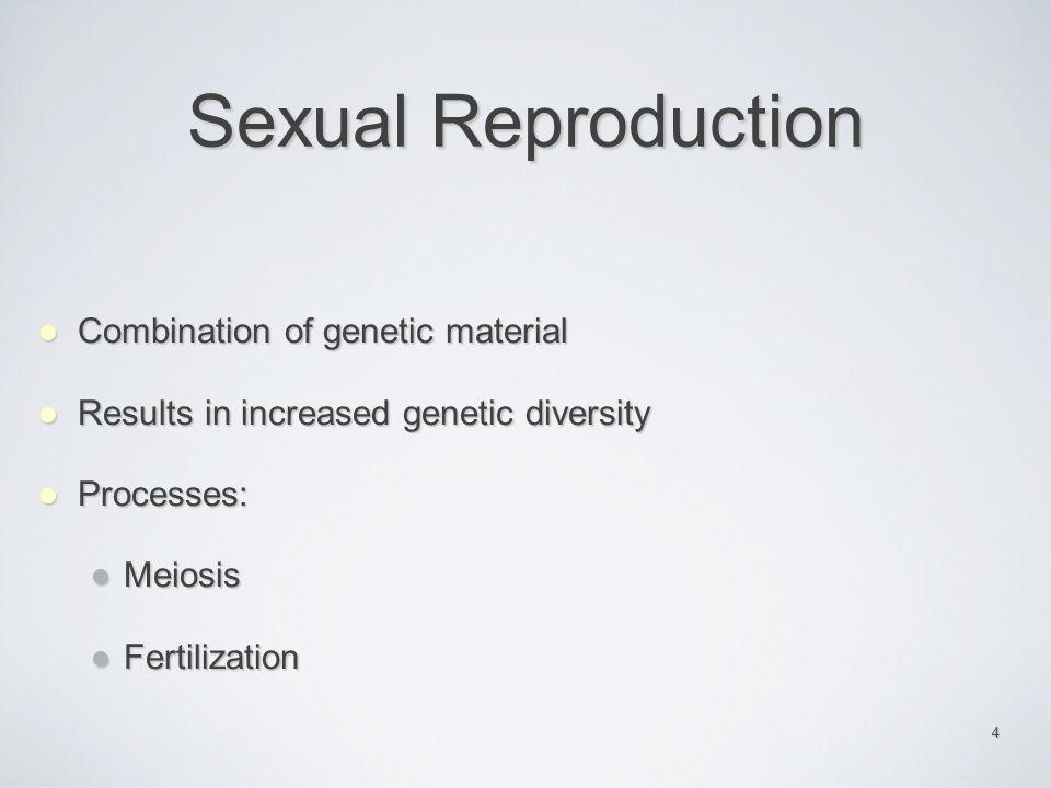 15 Mendel's Law of Segregation Each plant inherits 1 allele for flower color from each parent.