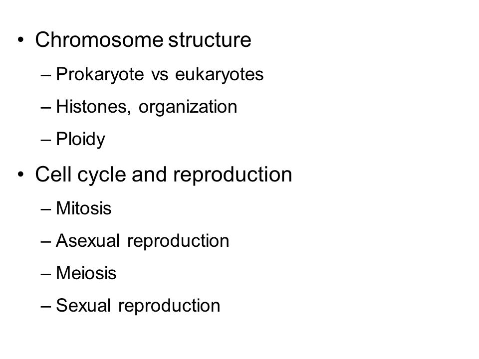 Chromosome structure –Prokaryote vs eukaryotes –Histones, organization –Ploidy Cell cycle and reproduction –Mitosis –Asexual reproduction –Meiosis –Sexual reproduction