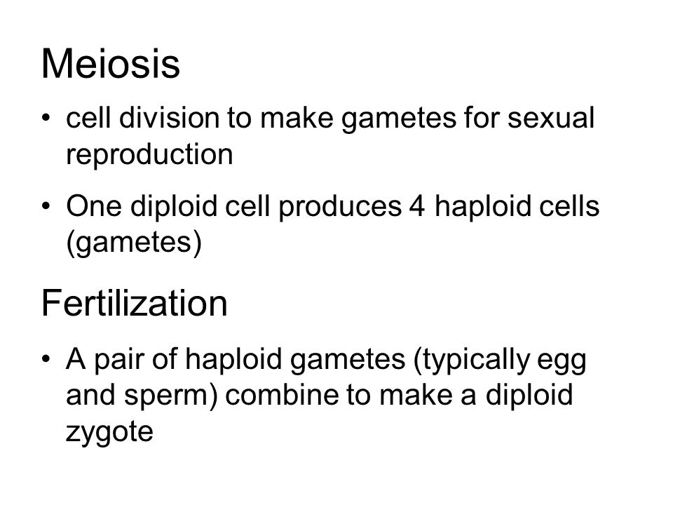 Meiosis cell division to make gametes for sexual reproduction One diploid cell produces 4 haploid cells (gametes) Fertilization A pair of haploid gametes (typically egg and sperm) combine to make a diploid zygote