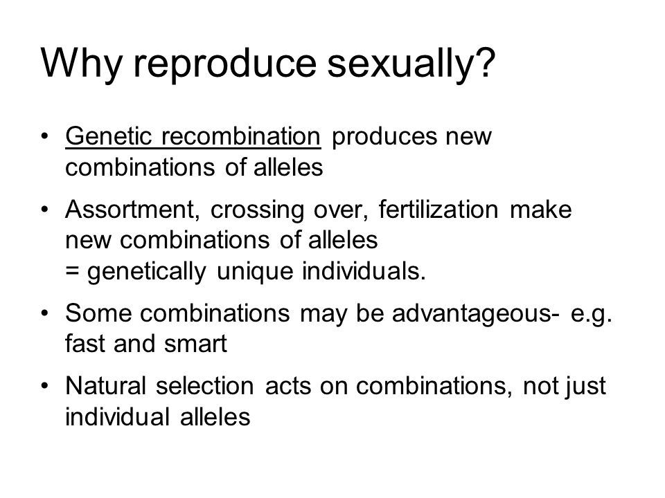 Why reproduce sexually.