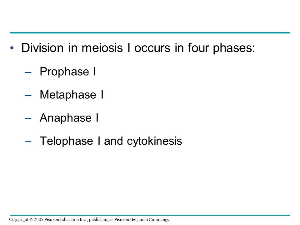 Division in meiosis I occurs in four phases: –Prophase I –Metaphase I –Anaphase I –Telophase I and cytokinesis Copyright © 2008 Pearson Education Inc.