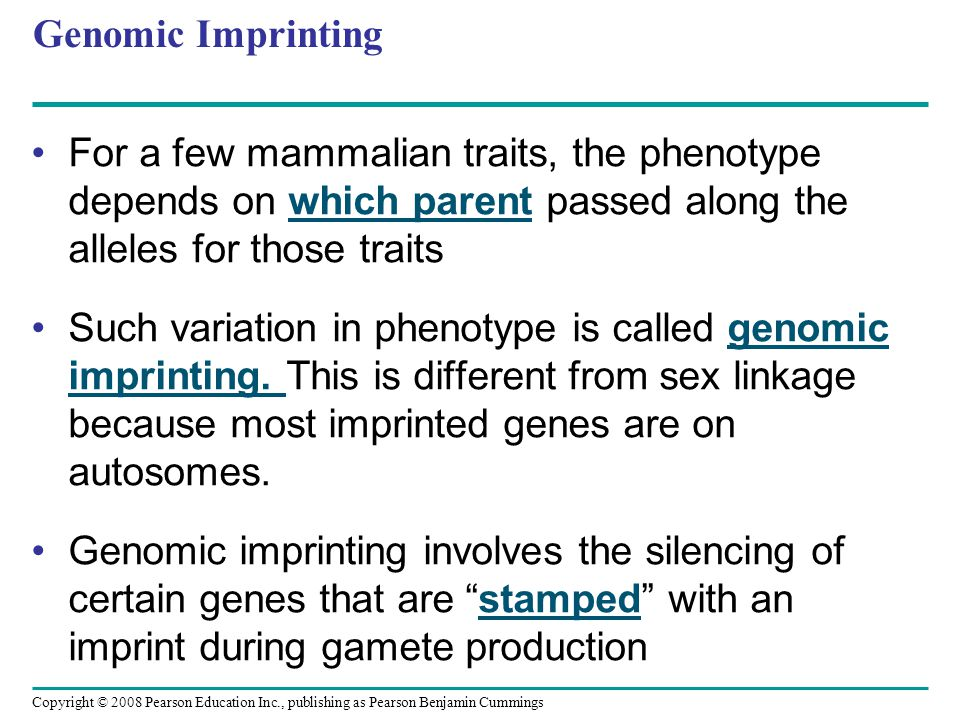 Genomic Imprinting For a few mammalian traits, the phenotype depends on which parent passed along the alleles for those traits Such variation in pheno