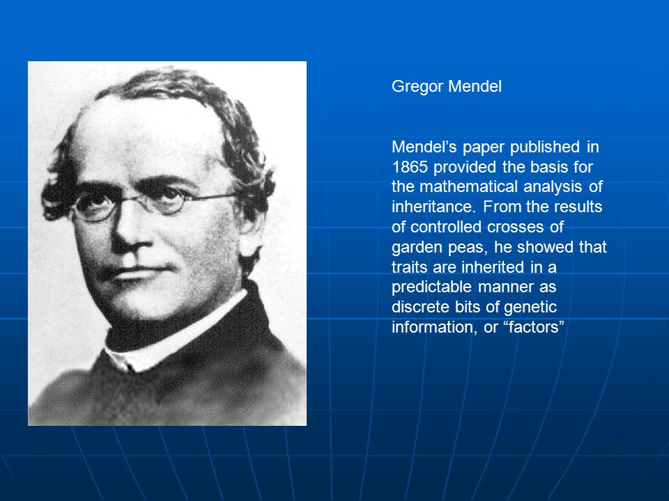 Gregor Mendel Mendel's paper published in 1865 provided the basis for the mathematical analysis of inheritance.