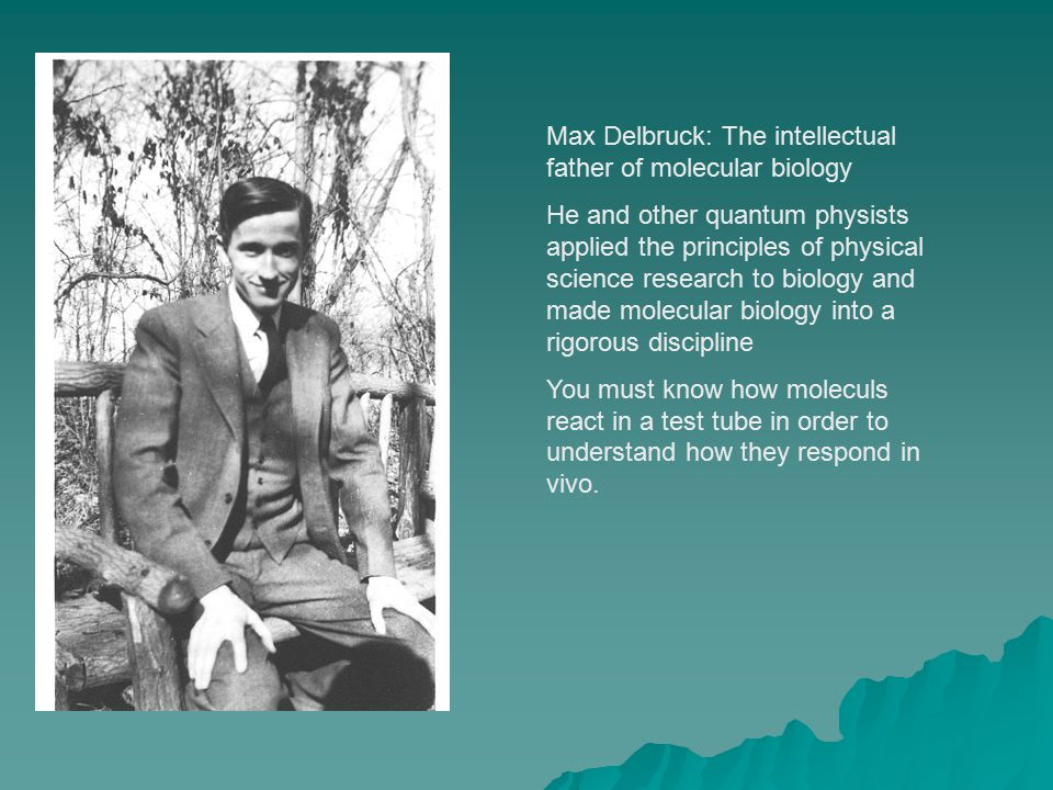 Max Delbruck: The intellectual father of molecular biology He and other quantum physists applied the principles of physical science research to biology and made molecular biology into a rigorous discipline You must know how moleculs react in a test tube in order to understand how they respond in vivo.