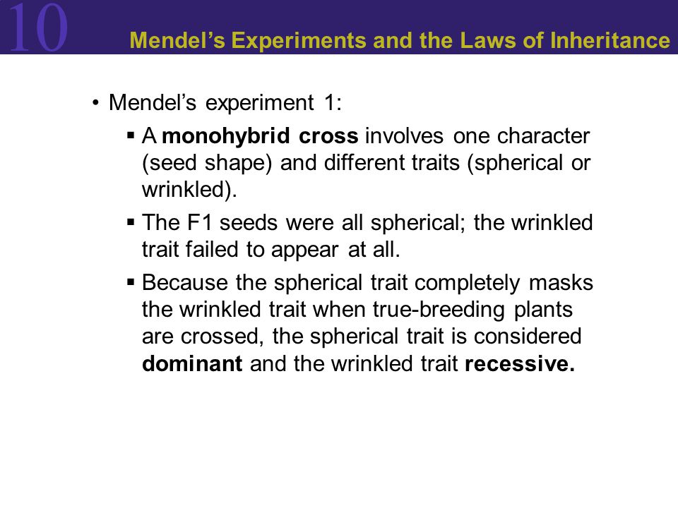10 Mendel's Experiments and the Laws of Inheritance Mendel's experiment 1:  A monohybrid cross involves one character (seed shape) and different traits (spherical or wrinkled).