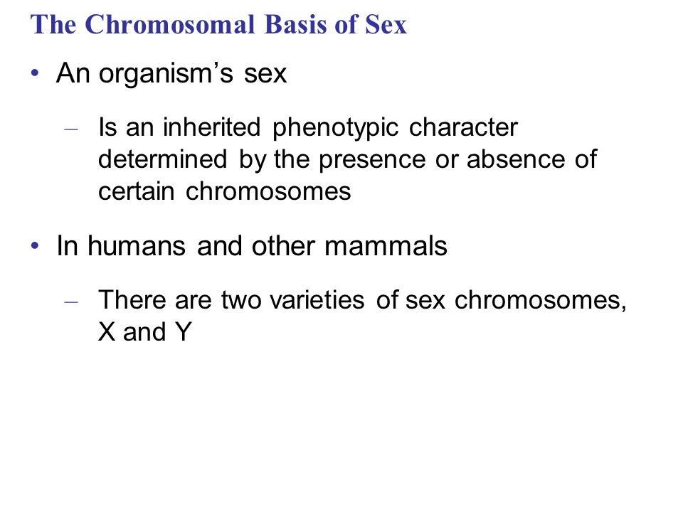 The Chromosomal Basis of Sex An organism's sex – Is an inherited phenotypic character determined by the presence or absence of certain chromosomes In