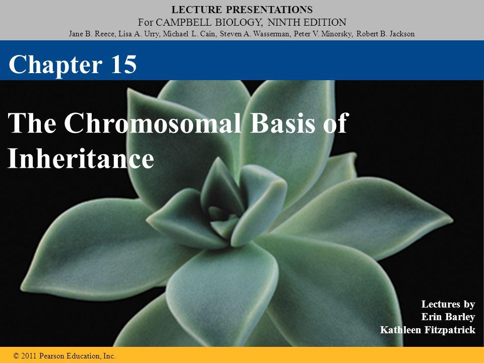 LECTURE PRESENTATIONS For CAMPBELL BIOLOGY, NINTH EDITION Jane B. Reece, Lisa A. Urry, Michael L. Cain, Steven A. Wasserman, Peter V. Minorsky, Robert
