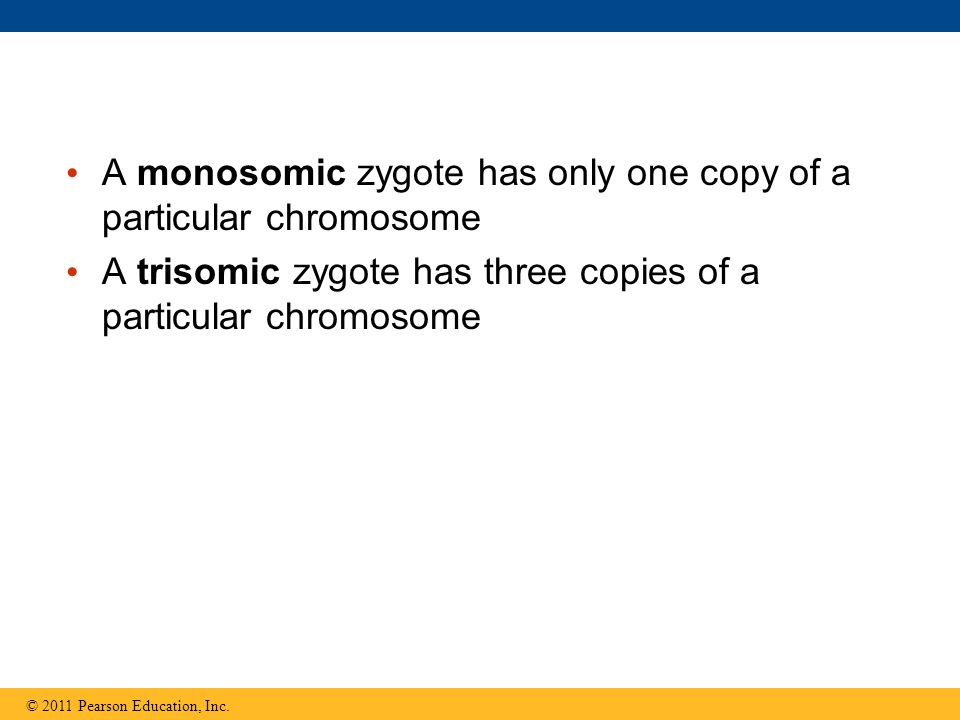 A monosomic zygote has only one copy of a particular chromosome A trisomic zygote has three copies of a particular chromosome © 2011 Pearson Education