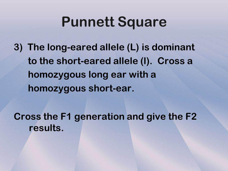 Punnett Square 2) Cross two heterozygous tall parents. Tall= T short= t T TTTT T t t t t tt What is the genotype ratio? 1 TT: 2 Tt: 1 tt What is the p