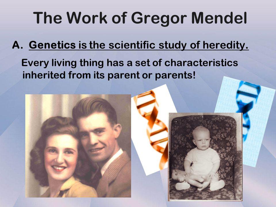 Introduction to Mendelian Genetics Introduction to Mendelian Genetics
