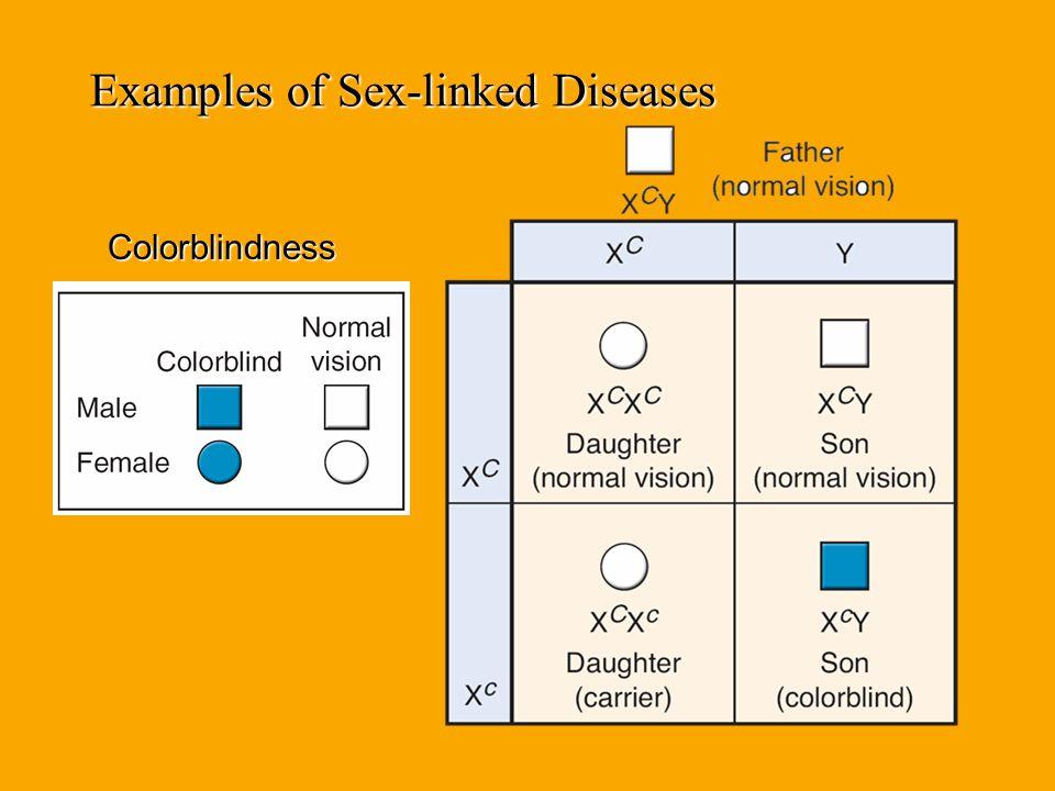 Practice Problems Hemophilia is an X-linked recessive disease. Cross a heterozygous female with a normal male. Hemophilia is an X-linked recessive dis
