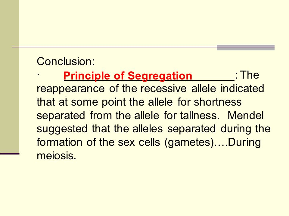 Conclusion: · ___________________________: The reappearance of the recessive allele indicated that at some point the allele for shortness separated from the allele for tallness.