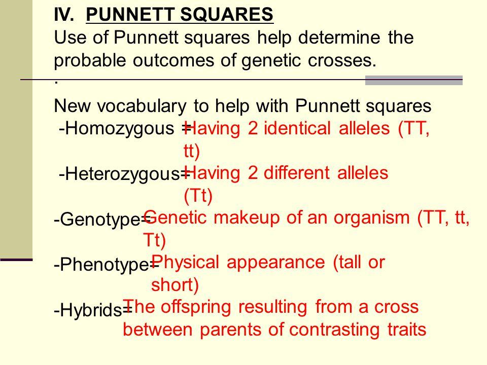 IV.PUNNETT SQUARES Use of Punnett squares help determine the probable outcomes of genetic crosses.